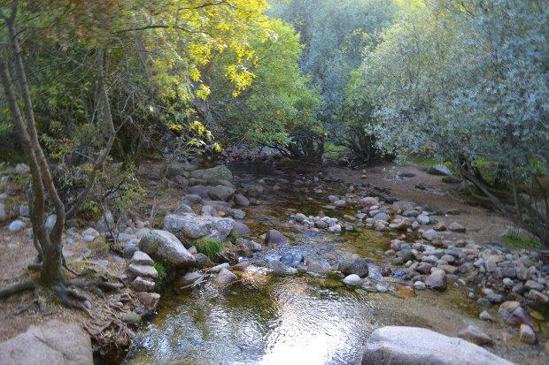 Arroyo del Sestil de Maillo