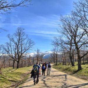 Camino del Paular