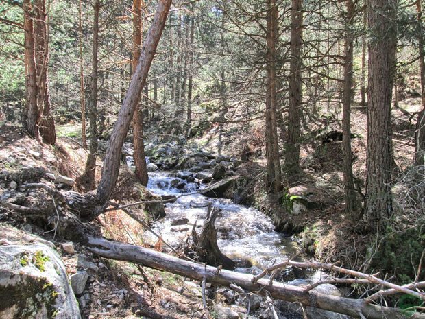 Arroyo Cueva Valiente