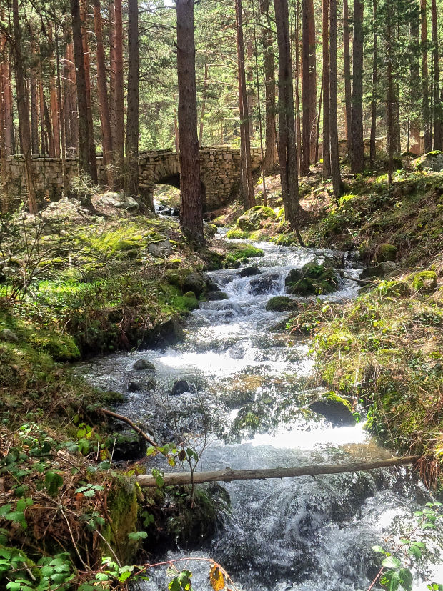 Arroyo Cueva del Monje