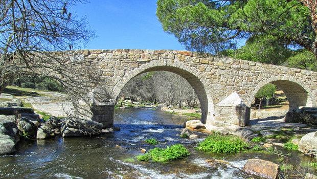 Puente Mocha