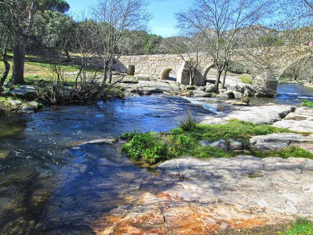 Puente río Cofio