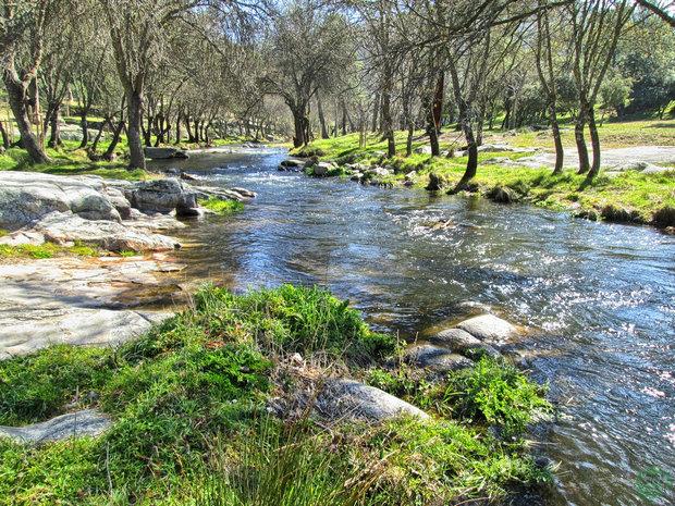 Río Cofio
