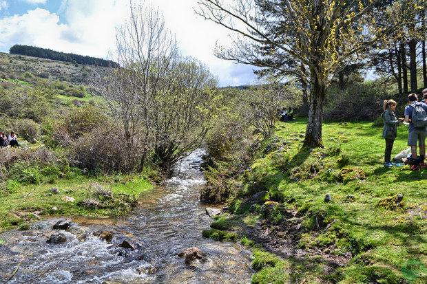 Arroyo del Hornillo