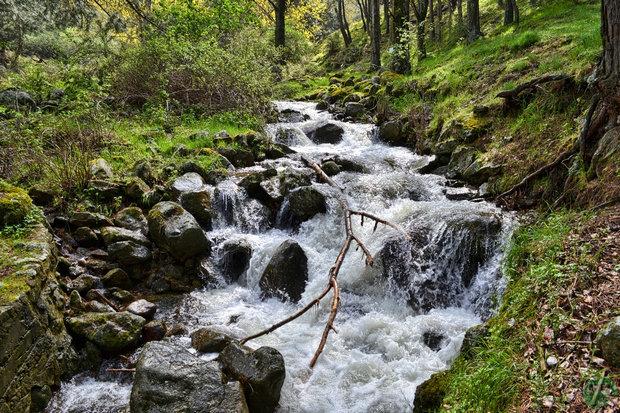 Río Aceña