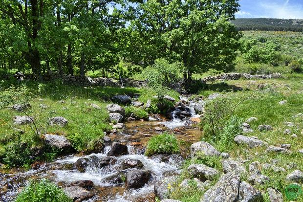 Arroyo del Chorro de San Mamés